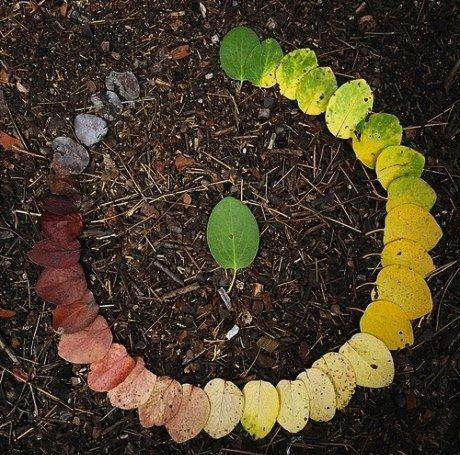 Autumn, season of transition and changes