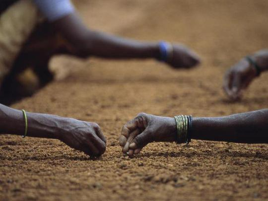 Photo: Planting seeds by Jim Richardson, National Geographic