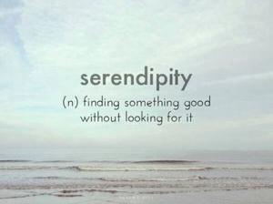 86597-Serendipity